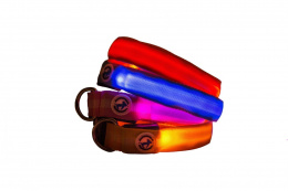 All For Dogs Obroża dla psa Led Collar Yellow M 30-50 cm